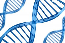 Diagnostico genetico preimplantacional