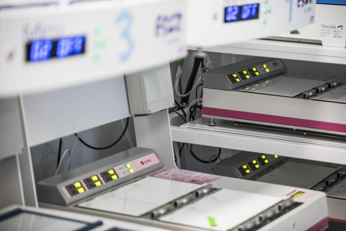 Cultivo embrionario en el laboratorio