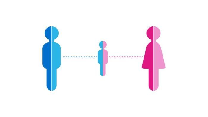 What is GeneSeeker, Genetic Compatibility Test?