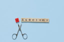 Male vasectomy procedure: what is a vasectomy?