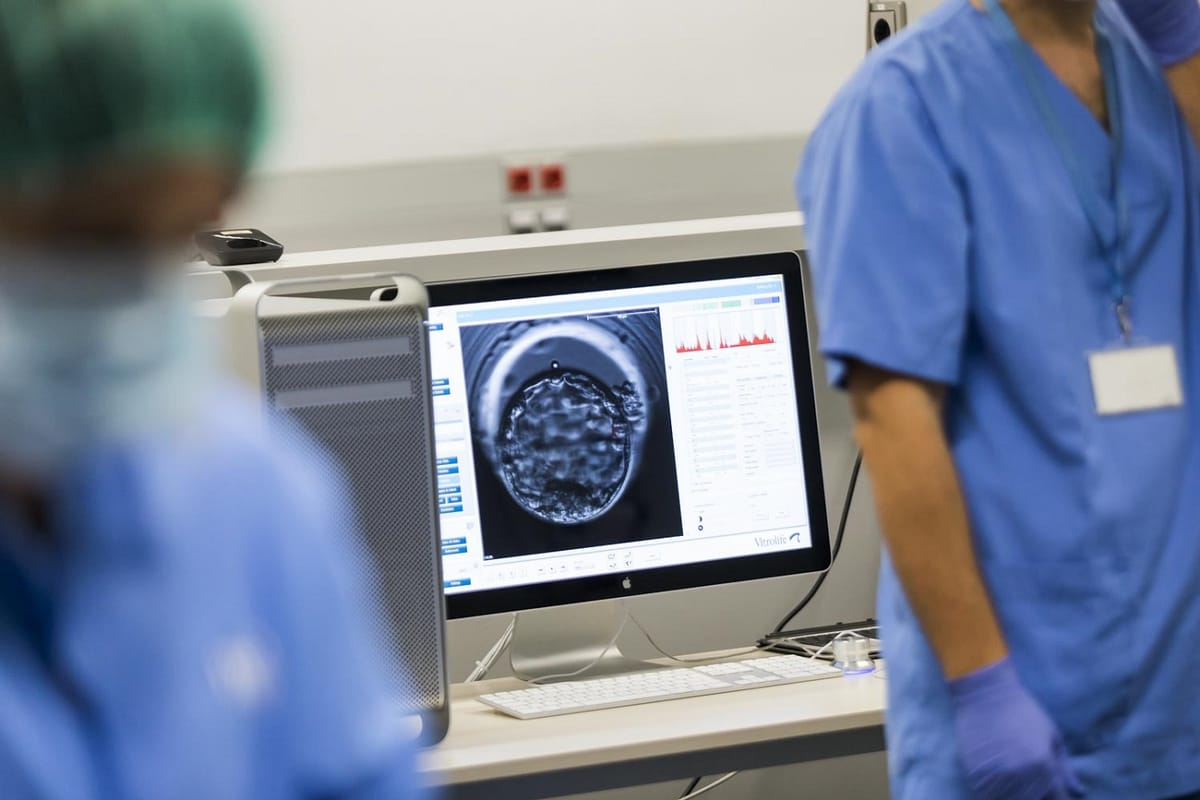 IVF embryo grading: Which embryos are good?