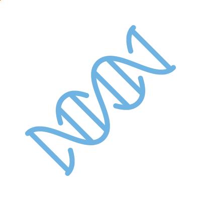 Pre-Implantation Genetic Testing (PGT-A)