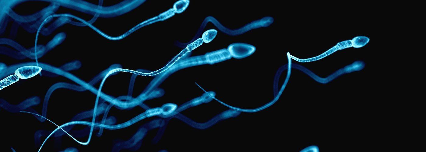 fertility tests for men