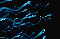 Fertility tests for men and options for assisted fertility treatments